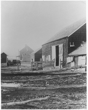 Western view of the Whitman Birthplace and farm circa 1920s. Photographer unknown.